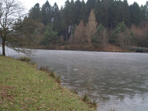 A frozen lake in the Dean.