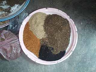 """Spices in preparation for making berbere. Clockwise from top left: nej asmud (white pepper), korarima, tikur asmud (black pepper), and abesh (or abish; fenugreek). These and tchew (ጨው; salt) are added to dried and ground red pepper to make berbere"""