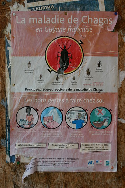 Awareness and prevention campaign poster in Cayenne, French Guiana, 2008.