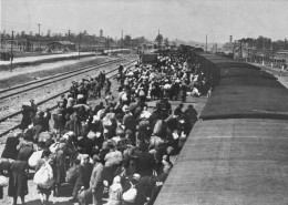Jews from Carpathian Ruthenia arrive at Auschwitz, offloaded onto the ramp at Birkenau in close proximity to the gas chambers. The chimneys in the background belong to Crematoria II and III on the left and right respectively, whose structures house s