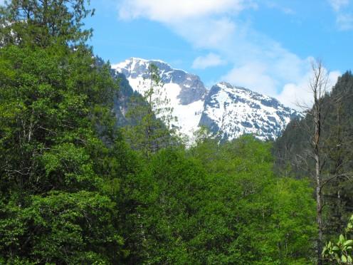Sourdough Mountain