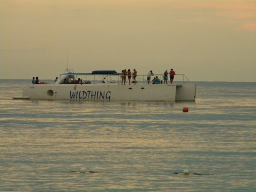 """A sunset cruise on the """"Wild Thing"""" is great for watching the sunset and visiting the cliffs while the party goes continues."""