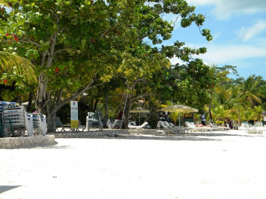 The beautiful ans spacious beach area at Coco La Palm Resort