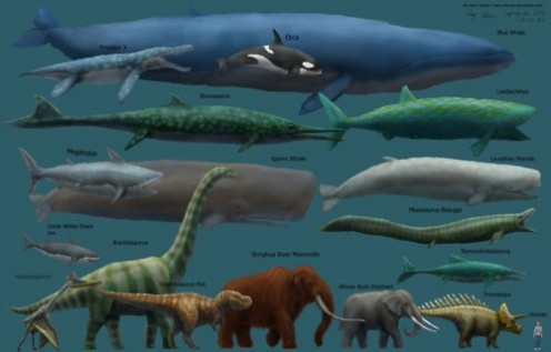 If dinosaurs were alive today humans exist