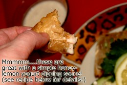 I serve these stuffed pastry triangles with a sweet and tart Hone Lemon Yogurt dipping sauce. It is so easy to make and adds huge favor to these savory appetizers.  I have provided the simple recipe for you below highlighted in blue.