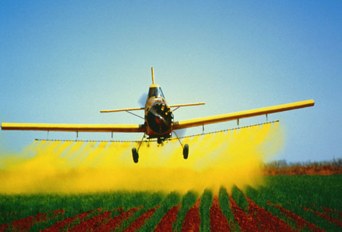 Herbicides and pesticides may contribute to development of parkinson's