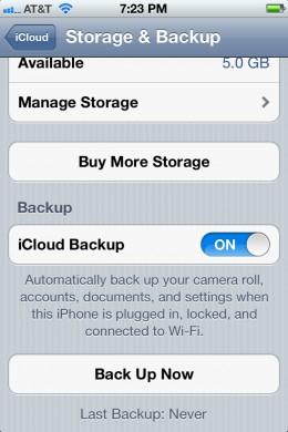 "Tap ""Manage Storage."""