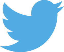 "Twitter's new logo, which  replaced all bird, lower-case ""t"", and typeface logos some might still hold dear"