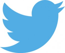 Where Twitter Are Going With Their Less Cute Athletic New Logo Replacing The Old One