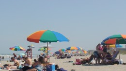 Beach umbrellas everywhere!