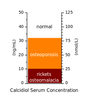 This illustration shows just how important vitamin D is in the direct prevention of diseases such as Osteomalacia and Osteoporosis.