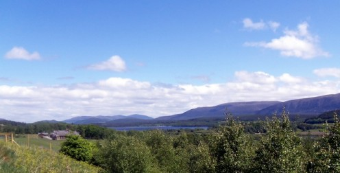 View from the Highland Wildlife Park.  The best in Scotland?  You be the judge.