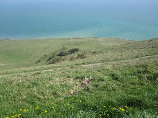 Grassland at the Seven Sisters