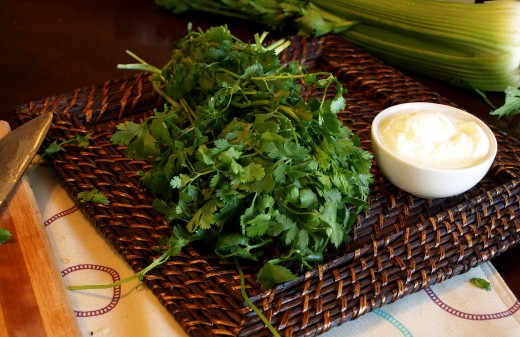 Make your final touches with cilantro (coriander) and yogurt.