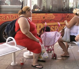 Obesity is a common cause and symptom of estrogen dominance. Photo by colros.
