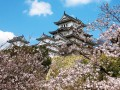 10 Imposing, Historic, Must-Visit Castles in Japan