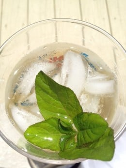 What's better then a cool glass of refreshing iced green tea then a hint of fresh mint!