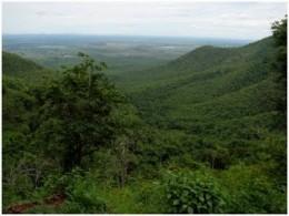 Biligirirangan hills