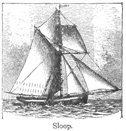 Sloop: a one-masted cutter-rigged vessel.
