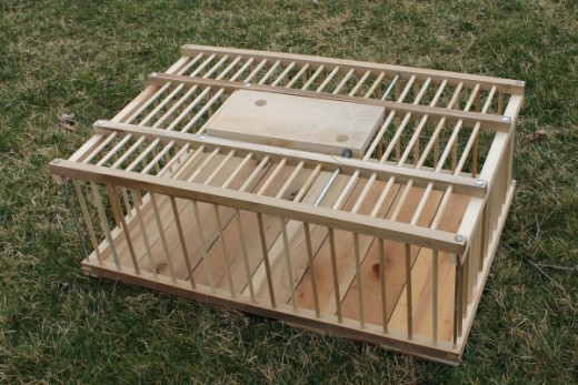 Reproduction wooden poultry cage for use or decor.