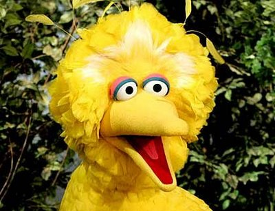 Although Big Bird could roller skate, ice skate, write poetry, and ride a unicycle, producers at Sesame Street deemed him only six years old
