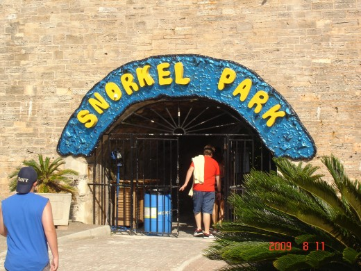 Bermuda at Snorkel Park