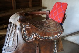 Tack Room, Saddle