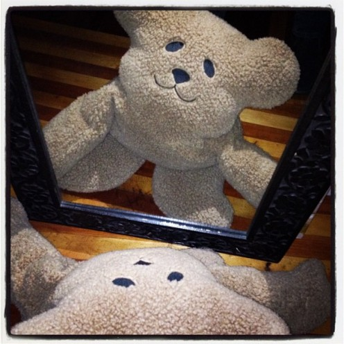 EVEN STUFFED ANIMALS SUFFER FROM NARCISSISM.