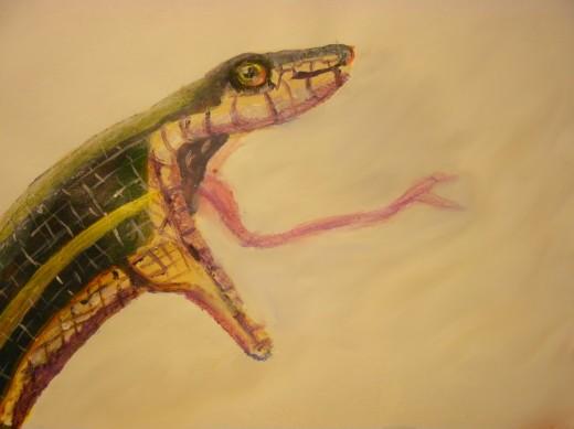 Garter snake opening it's unhinged jaws