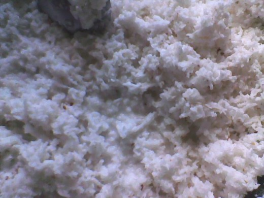 grated/ dessicated coconut