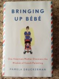Book Review:  Bringing up Bebe