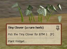 A herb