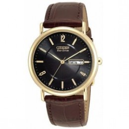 Men's | Gold-Tone | Leather Strap