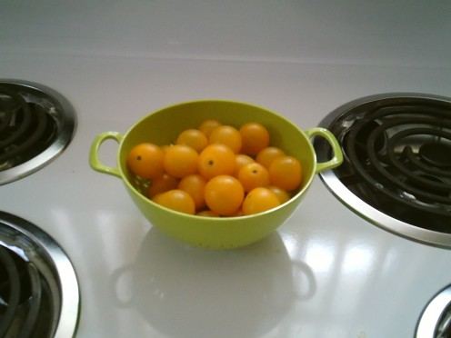 Yellow Tomatoes in Colander
