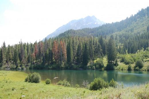 Trapper Lake, Grand Teton National Park