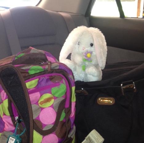 Ready for a fun road trip!