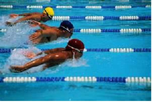 Swimming boosts endorphins