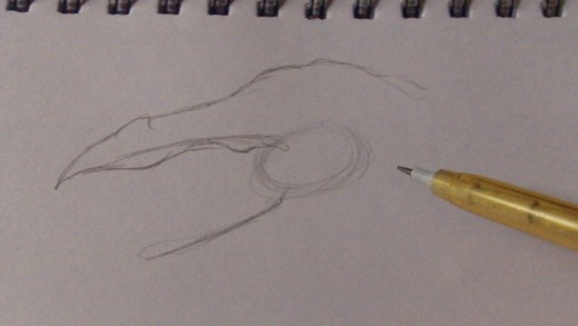 Start to sketch the top of the head and mouth.