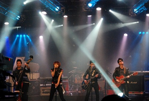 The RockTigers in concert (2011)