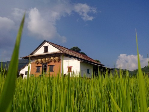My farmhouse in Nepal