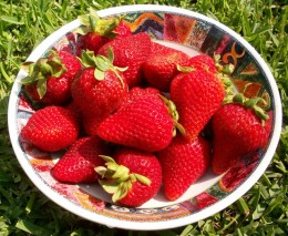 Strawberries are a versatile fruit.