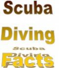 Scuba Diving Facts Tips Benefits and Advice