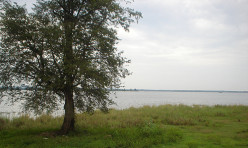 Views Around Parakrama Samudra Reservoir, Polonnaruwa, Sri Lanka.
