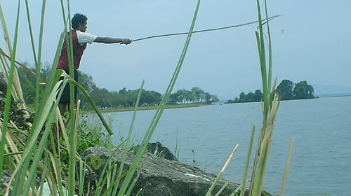 Fishing with a makeshift rod...