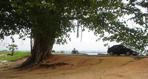Under the Banyan tree shade...