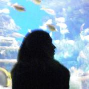 laarensbak profile image