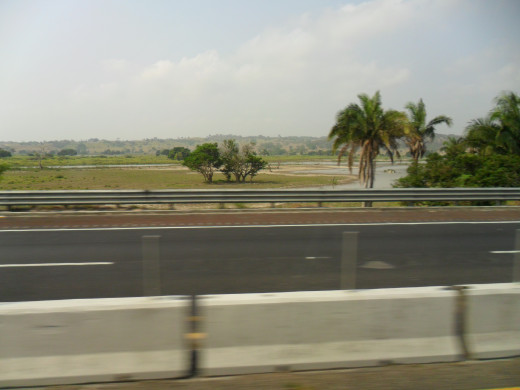View of the landscape from the bus.