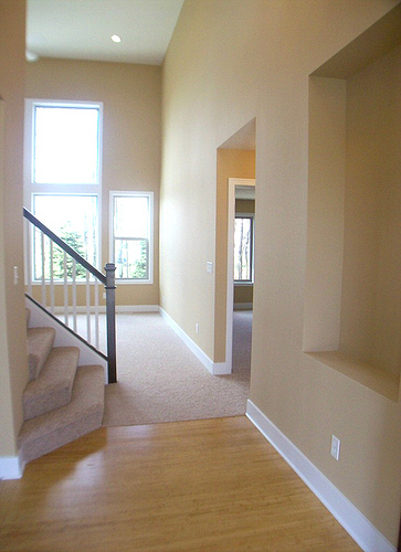 Wood in foyer leading into carpeted areas.