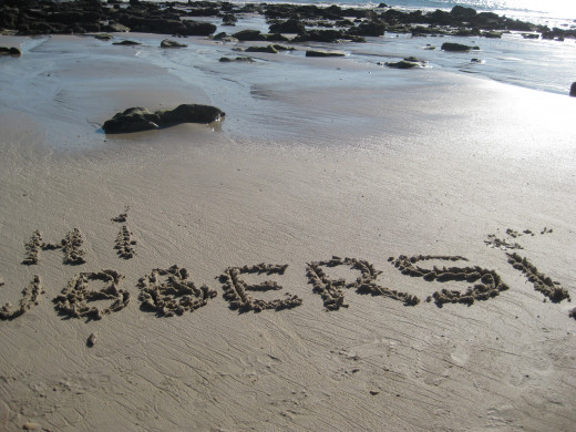 Love the rockpools on the beach