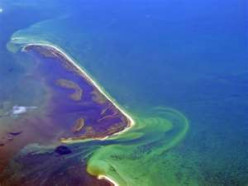 Eutrophication:Causes and Solutions